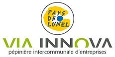 Logo-via-innova-BD site